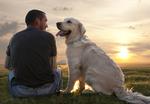 Ostseebad Wustrow Urlaub mit Hund easyquartier.deVermittlungsagentur
